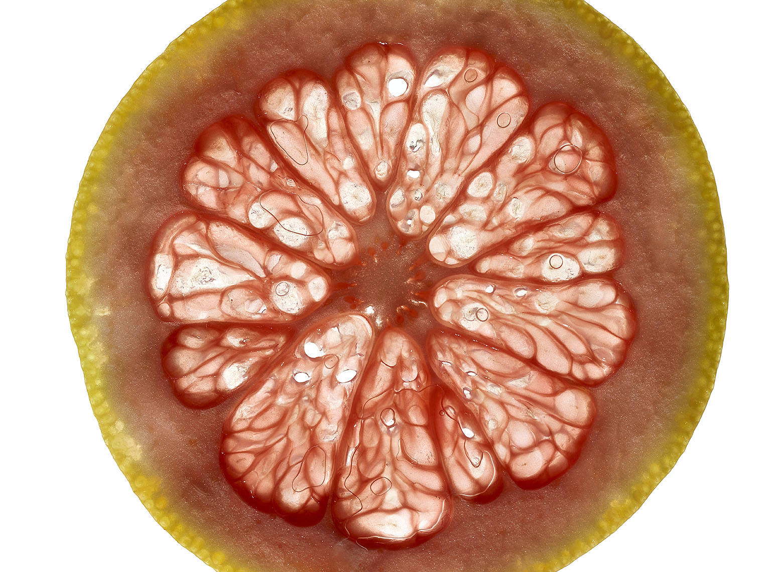 Genome_Grapefruit3_75940