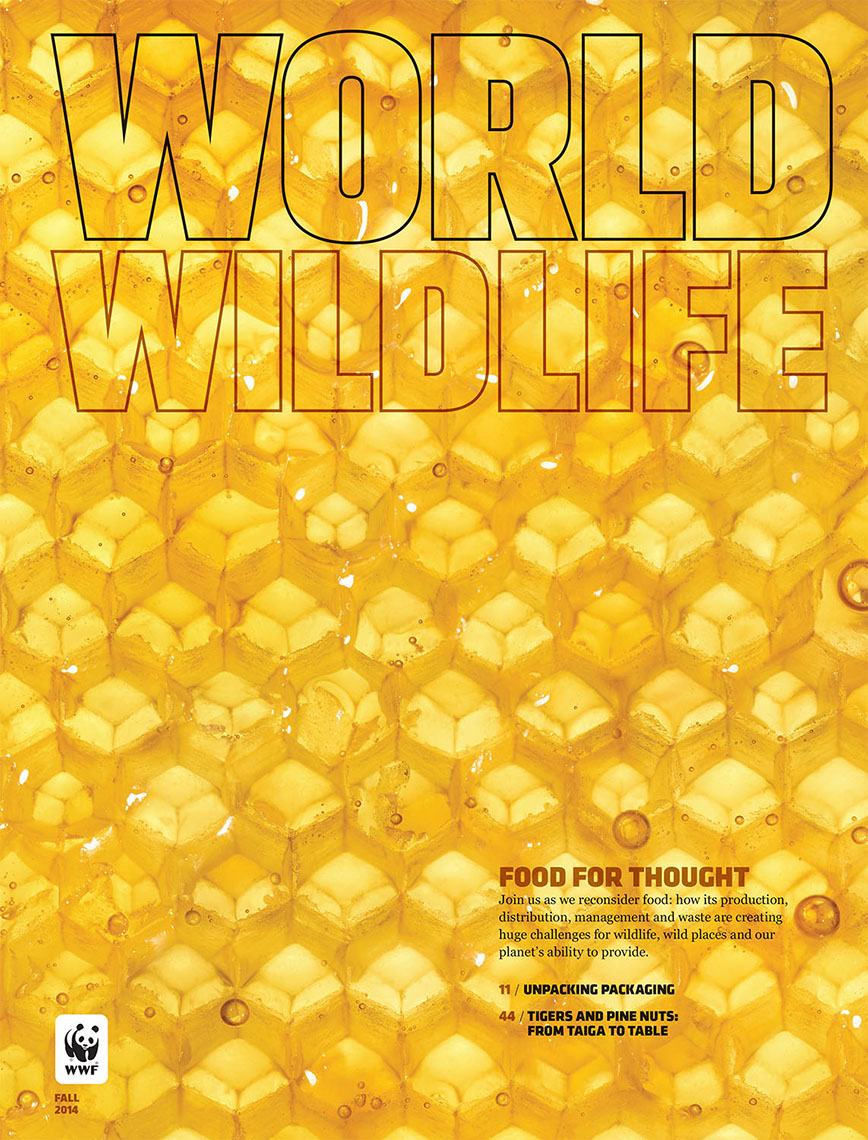 wwfcover